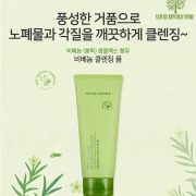 bee-venom-cleasing-foam-nature-republic-1