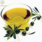 Dầu Gội Natural Olive Hydro Shampoo Nature Republic